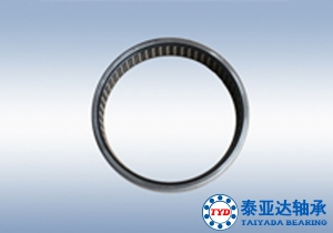 Radial needle roller and cage assembly